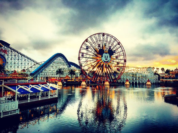 Today's 5 Most Memorable Official Disney Tweets – February 1, 2016