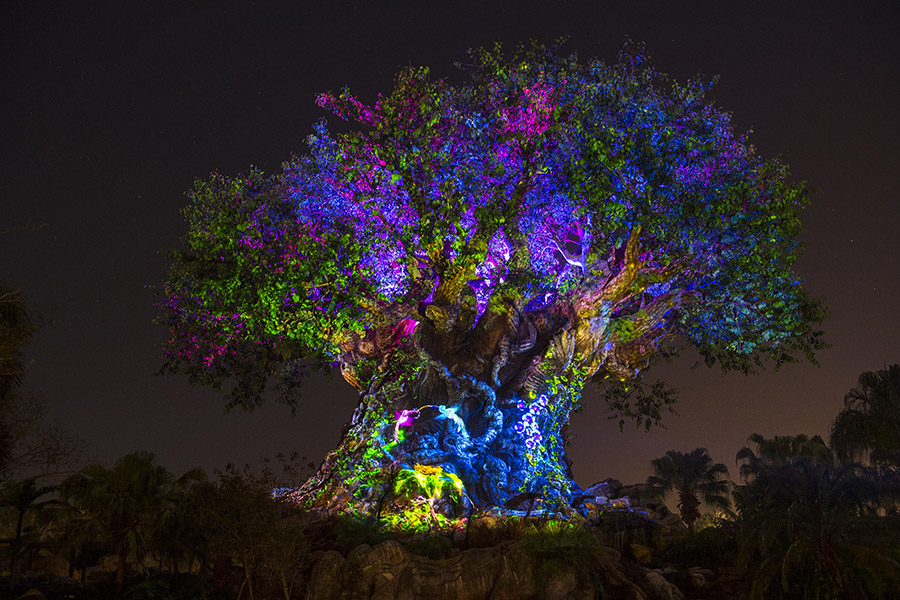Jungle Book Show to Debut with Animal Kingdom Nighttime Experiences on Memorial Day Weekend