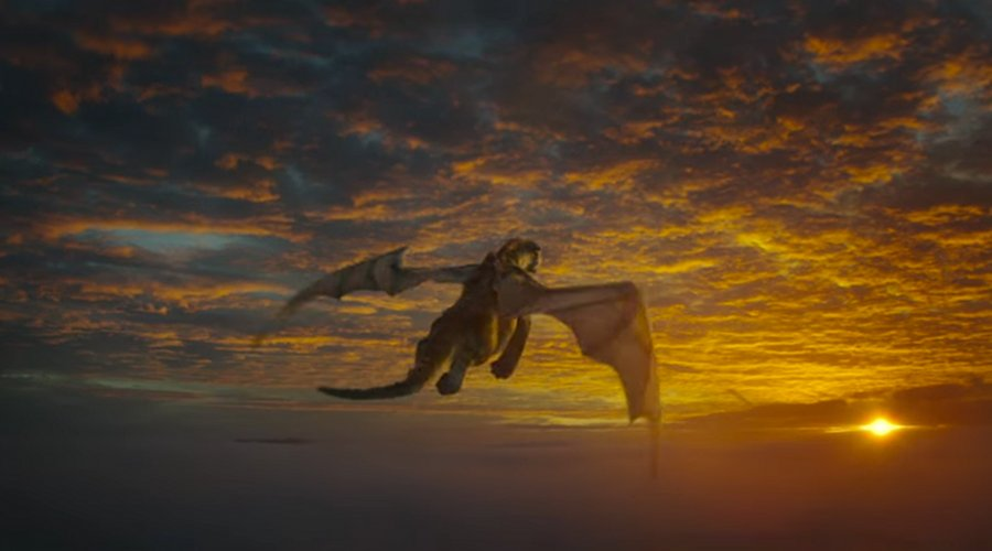 Elliot flies into the sunset