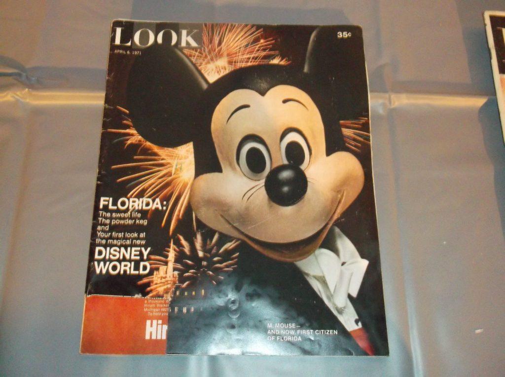 MickeyLOOK (1)