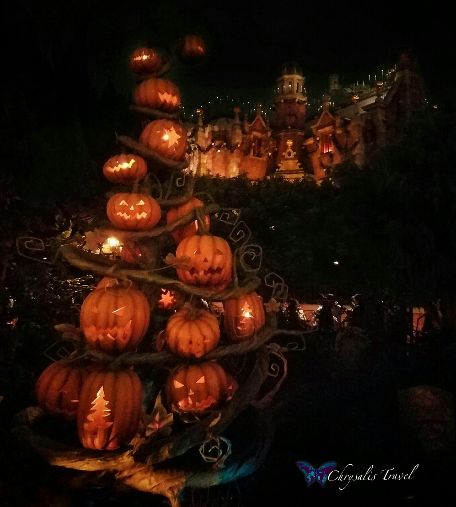 pumpkin-tree-at-the-haunted-mansion-holidays