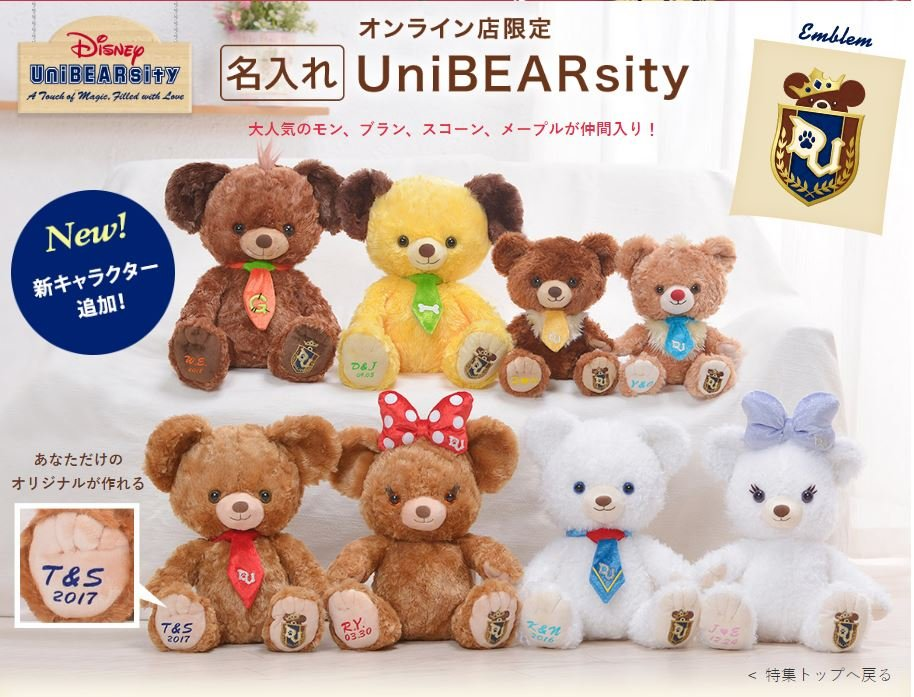 unibearsity-photo-1