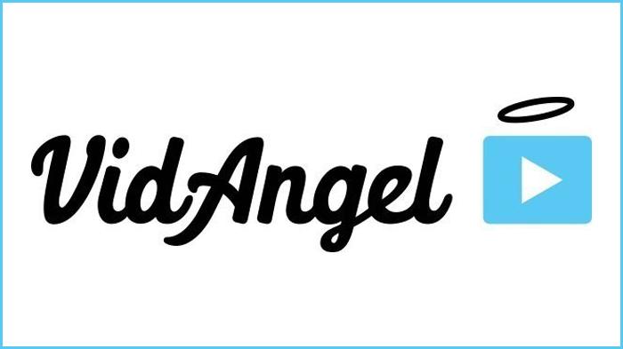 Disney Wins Injunction Against VidAngel Service