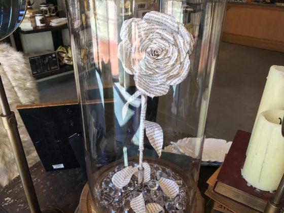 Belle's Rose