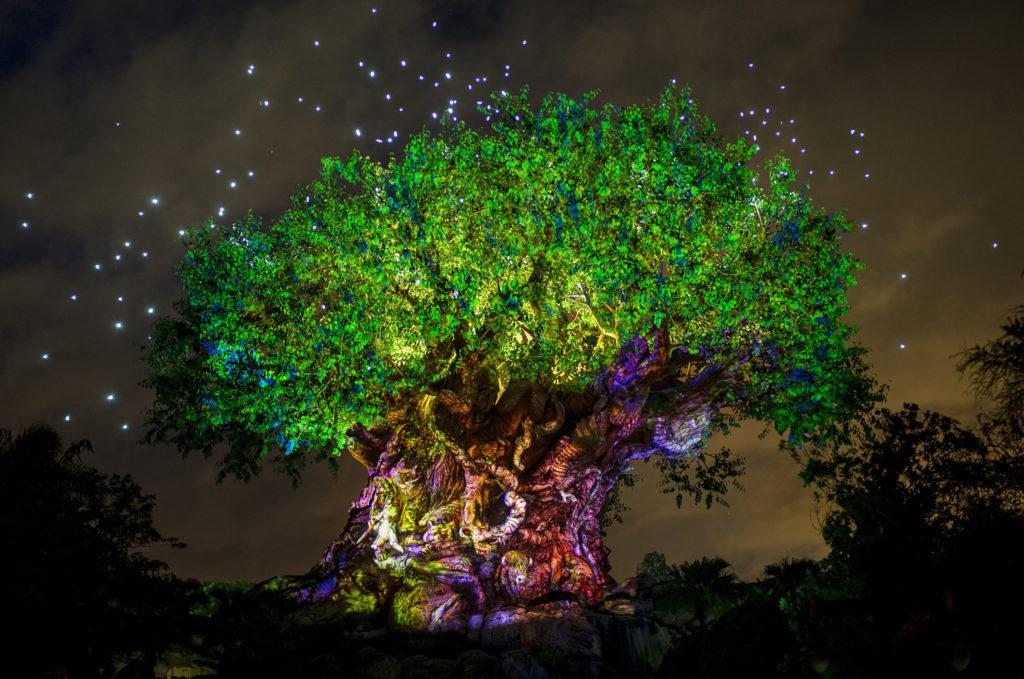 The Tree Of Life At Disneys Animal Kingdom Lights Up Wednesday May 24 2017 In Celebration New Land Pandora D World Avatar As It Glows