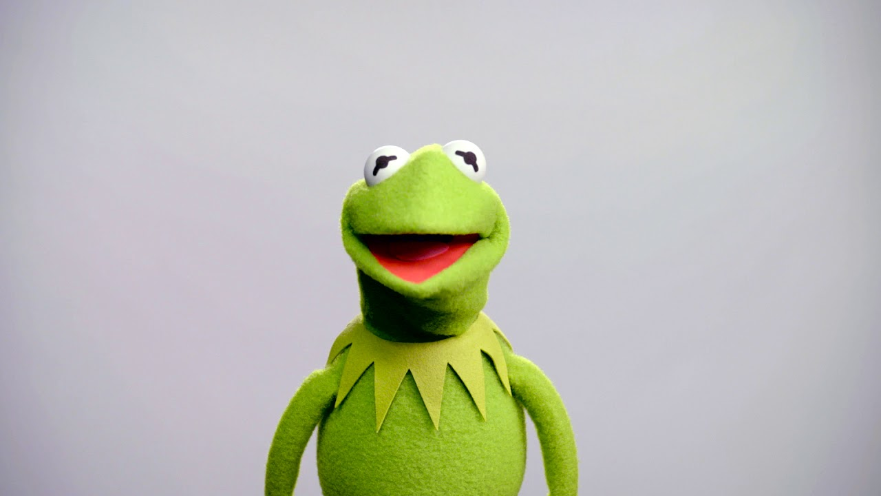New Kermit Performer Makes Debut Following Predecesors Firing by Disney