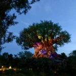 Tour Review: The Ultimate Nights of Adventure VIP Tour Disney's Animal Kingdom
