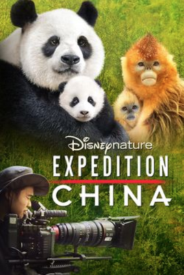 Digital Review Disneynature Expedition China Laughingplace Com
