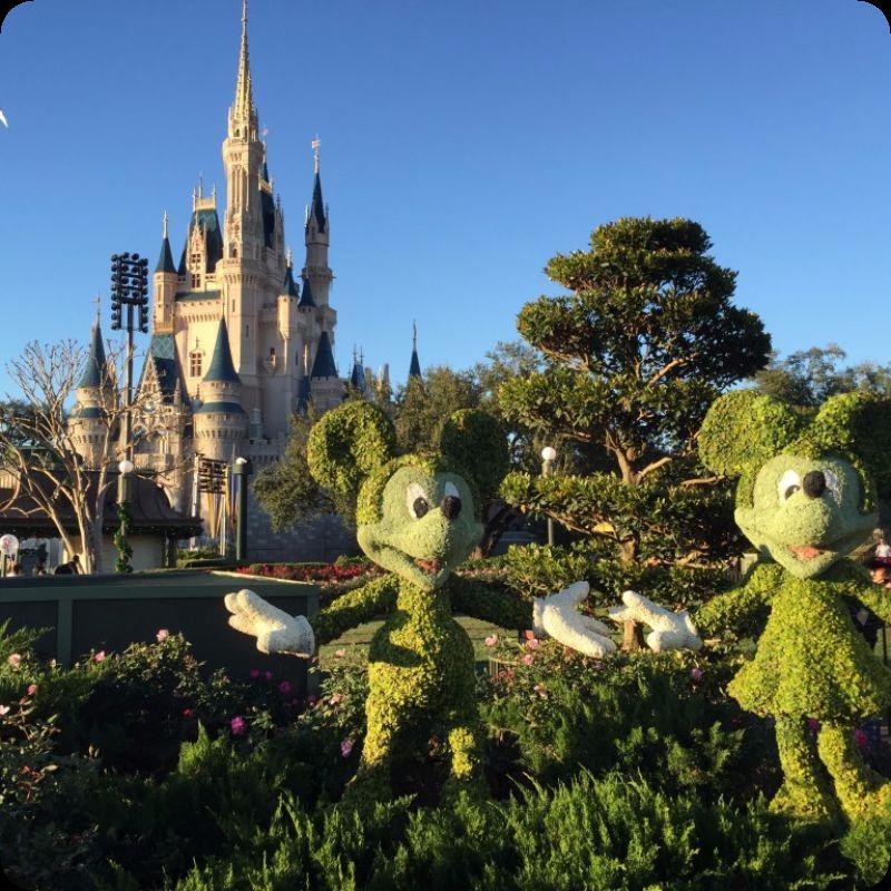 Today at Walt Disney World