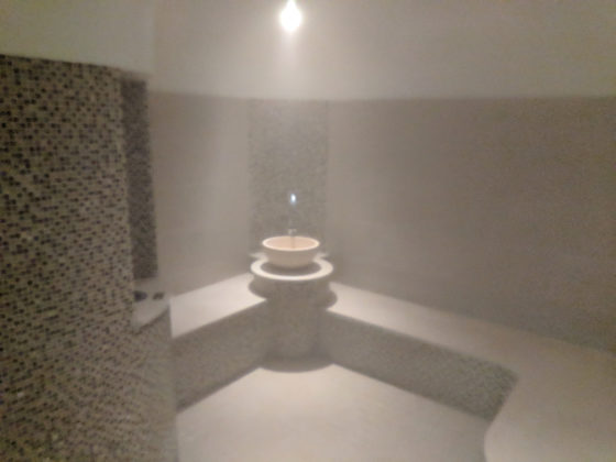 Inside the Mild Steam Room