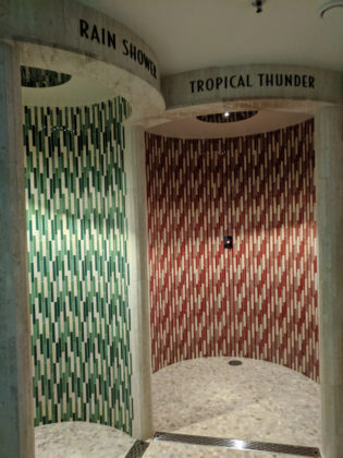 Rain Shower and Tropical Thunder