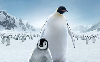 "Movie Review — Hulu's  ""March of the Penguins 2: The Next Step"""