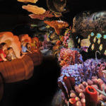 100 Days of Pixar: The Seas with Nemo & Friends and Finding Nemo Submarine Voyage