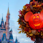 Walt Disney World Introduces Ultimate Disney Fall into Magic Package