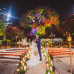 Disney Adds the Tree of Life as Wedding Ceremony Location Option
