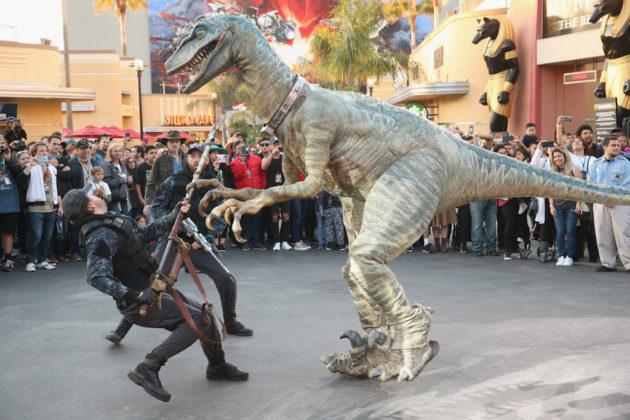 Universal Studios Resorts