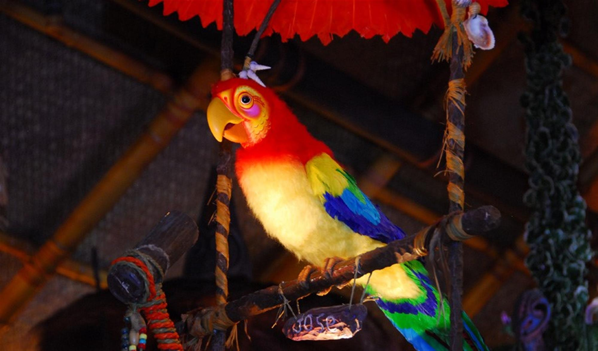 walt disney s enchanted tiki room magic kingdom laughingplace com rh laughingplace com Tiki Room Iago Disney Tiki Room Birds