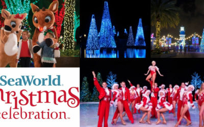SeaWorld's Christmas Celebration Begins November 17 at SeaWorld Orlando