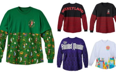 Disney Parks Spirit Jerseys