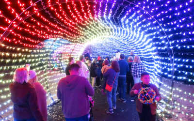 Video: L.A. Zoo Lights Brightens the 2018 Holiday Season at the Los Angeles Zoo