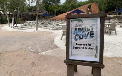 """Adult Cove"" Area Now Available at Disney's Typhoon Lagoon for a Limited Time"
