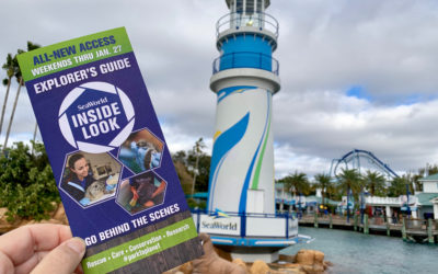 "Take an ""Inside Look"" at SeaWorld Orlando"