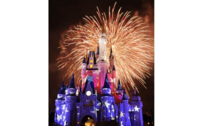 Disney Parks Offering Military Promotional Tickets Throughout 2019