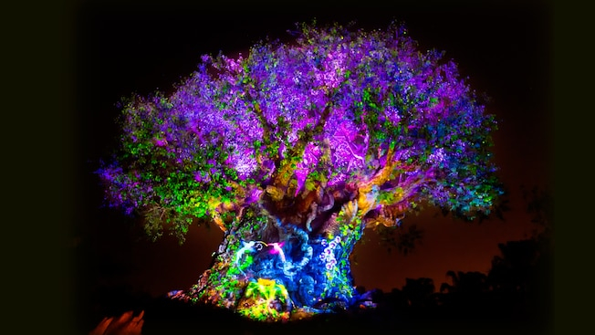New Tree Of Life Awakening Celebrating The Lion King Coming This May Laughingplace Com