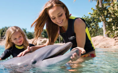 SeaWorld's Discovery Cove Named A Certified Autism Center