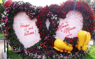 Video: Valentine's Day Decorations, Scavenger Hunt Make Disneyland the Perfect Romantic Holiday Getaway