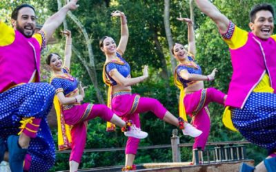 Bollywood Beats Experience Coming to Disney's Animal Kingdom