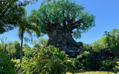 Disney's Animal Kingdom Throws A Party For The Planet