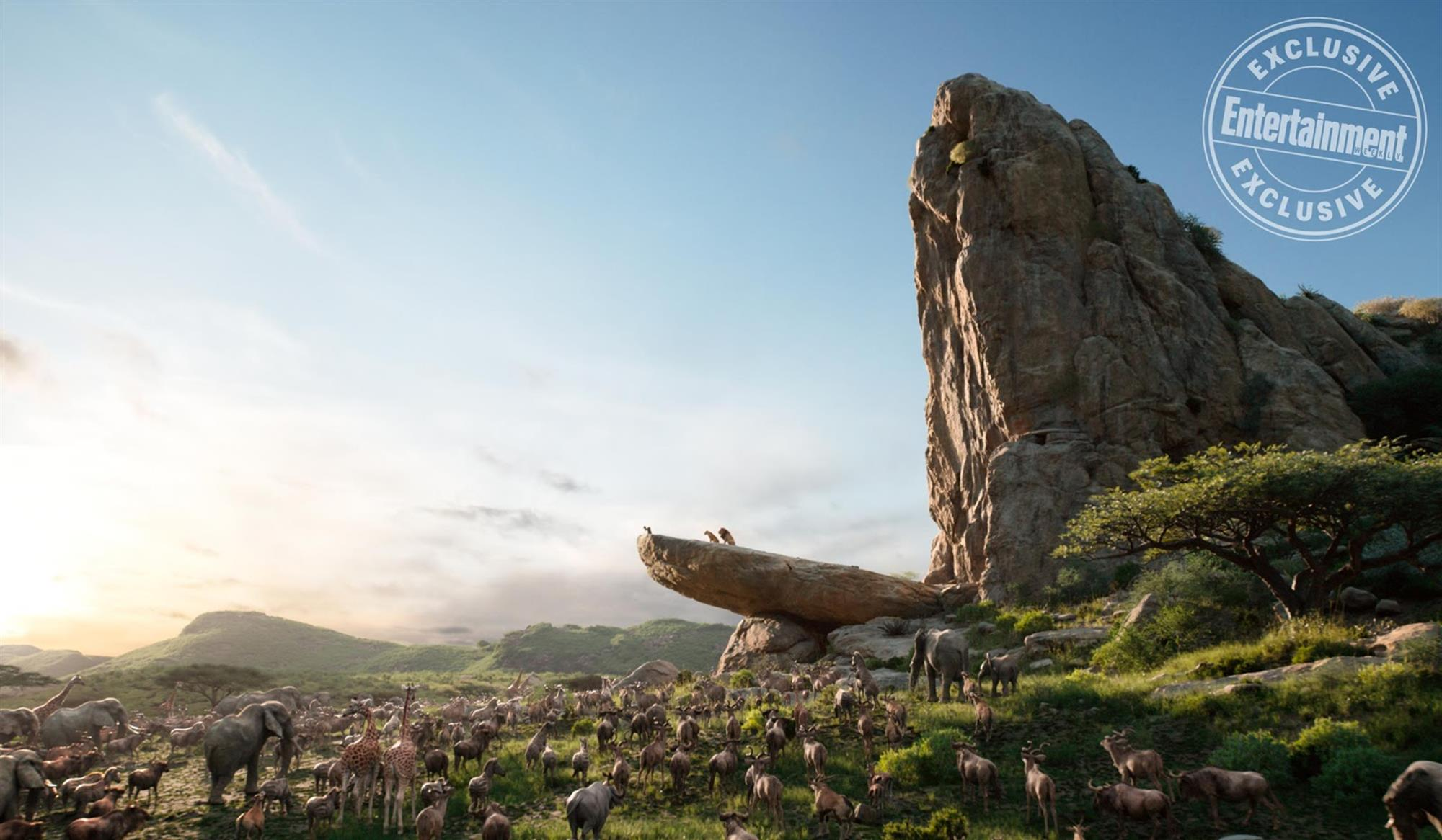 entertainment weekly shares new images from  u0026quot the lion king u0026quot