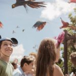 Party for the Planet Returns to Disney's Animal Kingdom This Month