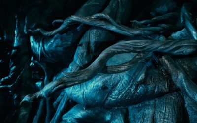 Universal Orlando Gives First Look at Devil's Snare on Hagrid's Magical Creatures Motorbike Adventure