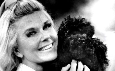 Actress and Singer Doris Day Passes Away at Age 97