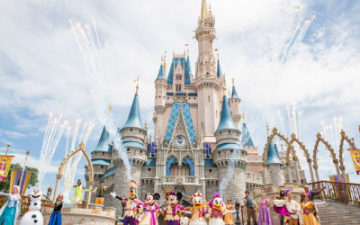 Florida Man Arrested for Bringing Concealed Firearm to Magic Kingdom
