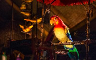 Disney Refutes Walt Disney's Enchanted Tiki Room Replacement Rumor