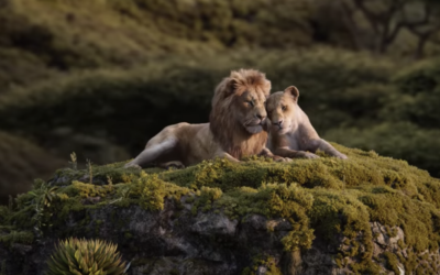 """Tickets Now On Sale for Disney's """"The Lion King"""""""