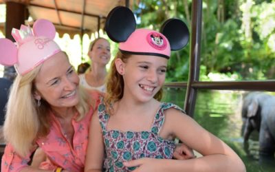 Walt Disney World Introduces Get Your Ears On Ticket For Florida Residents