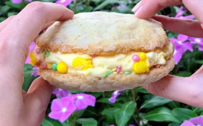 Wine Bar George Introduces Frozcato Sugar Cookie at Disney Springs