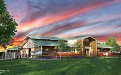 Disney's Fort Wilderness Resort & Campground Adding New Barn