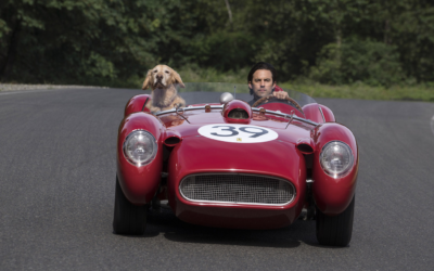 "Film Review: ""The Art of Racing in the Rain"" (Fox)"