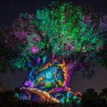 Disney's Animal Kingdom Announces Special New Year's Eve Celebration Plans