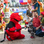 Sesame Street Safari of Fun Hosts Kids Weekends This Spooky Season at Busch Gardens Tampa Bay