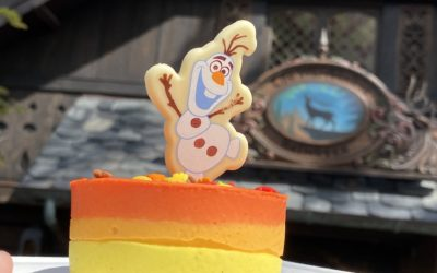 "New ""Frozen 2"" Treats Available Now and Coming Soon to Walt Disney World Resort"