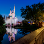 Additional 2020 Dates Announced for Disney After Hours at Magic Kingdom and Disney's Animal Kingdom