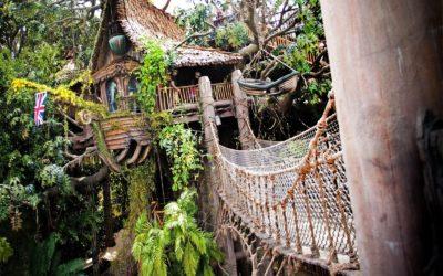 Broken Slat on Bridge Leads to Closure of Tarzan's Treehouse