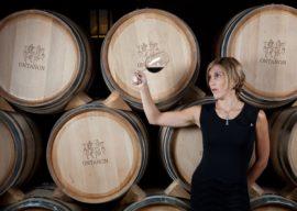 Jaleo at Disney Springs to Host First Wine Dinner On December 10