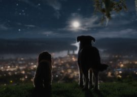 "Review: ""Lady and the Tramp"" (Live-Action 2019)"